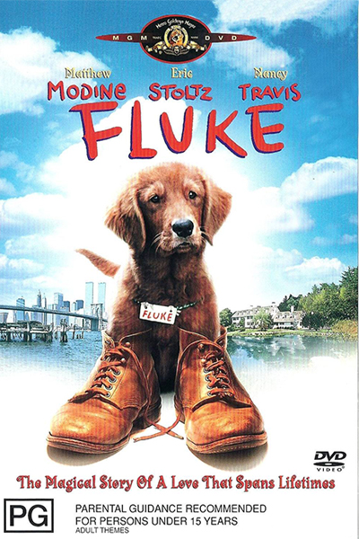 Fluke 1995 YTS